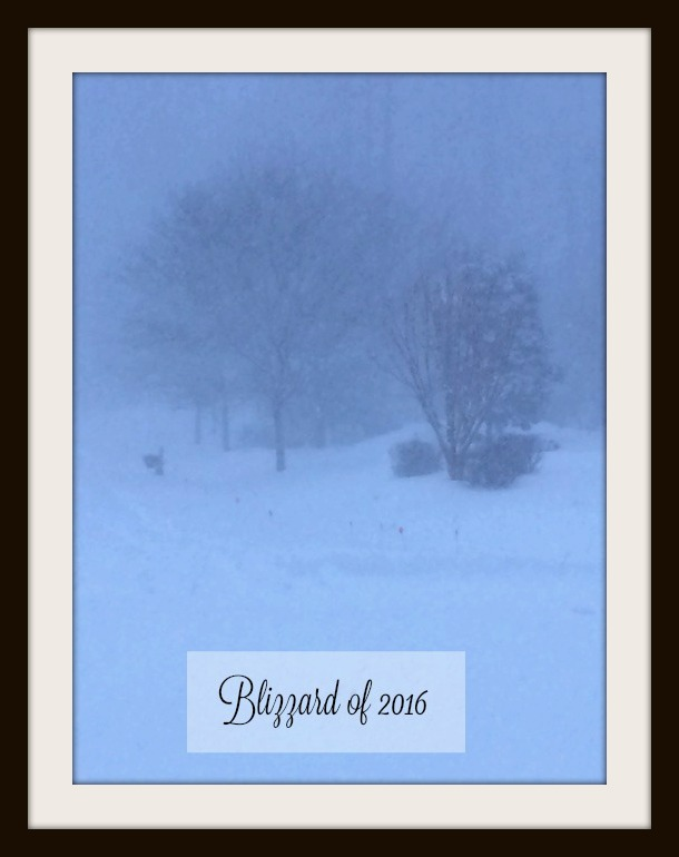 Blizzard of 2016 during high winds and heavy pounding snow.