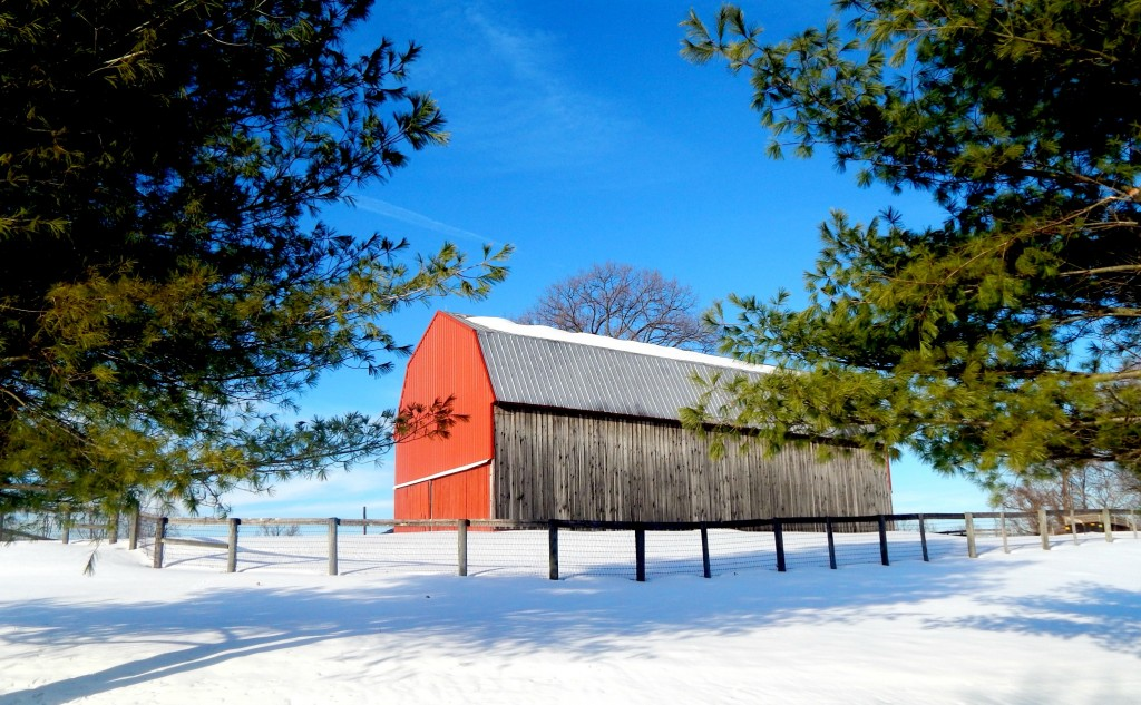 Red Barn Jonas 2016 Blizzard
