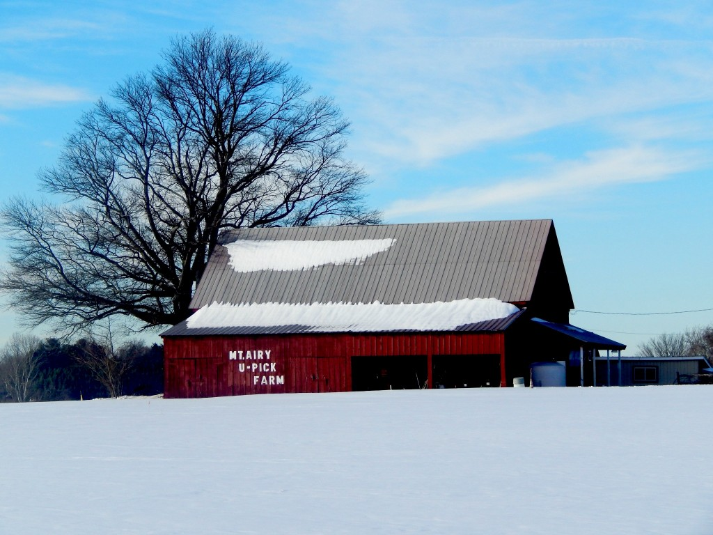 Red Barn U Pick Farm