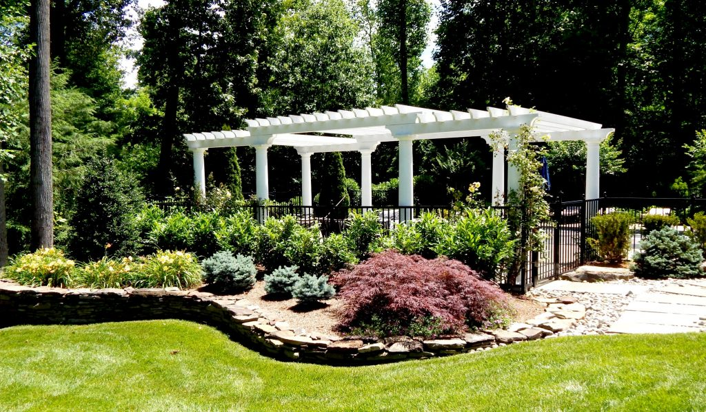 Landscaping around the pool and pergola