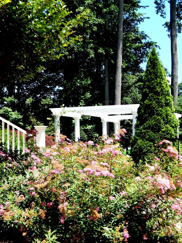 View of Pergola from the back patio