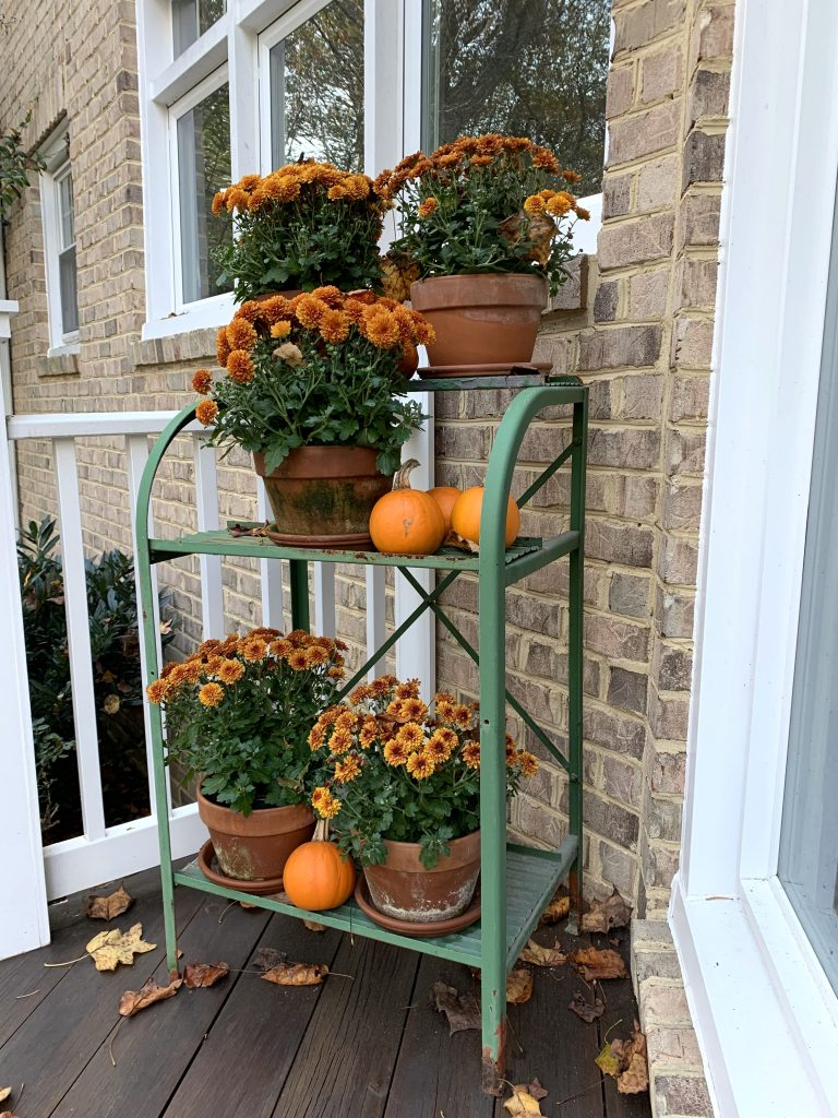 Vintage plants stand decorated with the colors of Fall